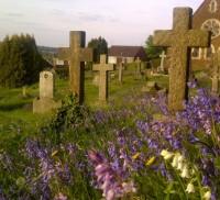 Cross shaped headstones, purple wild flowers in forground