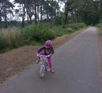 Accessible trail Hindhead FTC